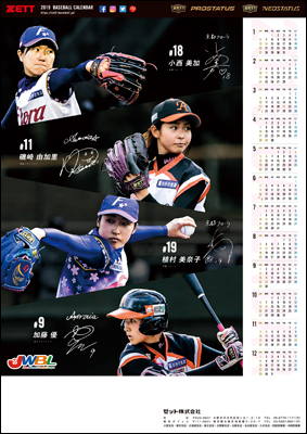 2019ゼットベースボールカレンダー 女子プロ野球年間カレンダー